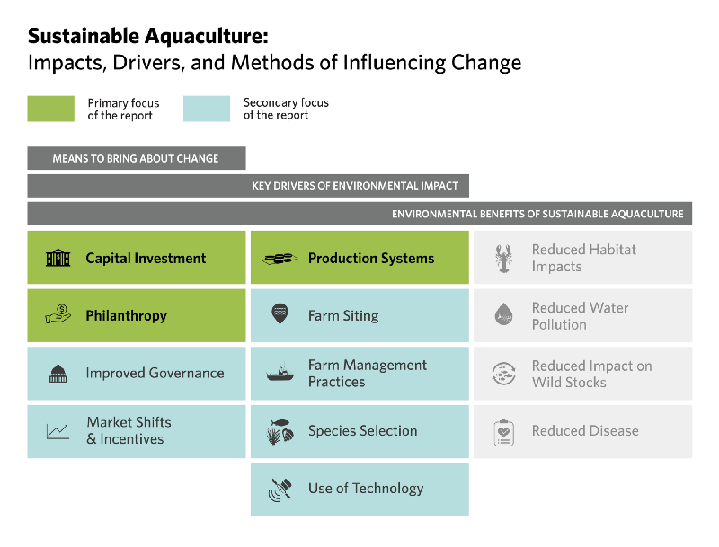 The Nature Conservancy Sustainable Aquaculture | Manolin